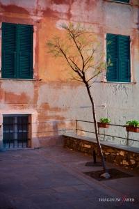Camogli, Riviera di Levante, Liguria, Italy