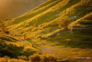 Golden Sunset, Mt. Becco, Liguria, Italy